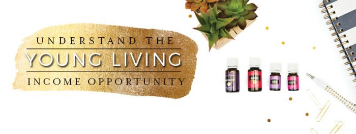 A Peek into Doing Young Living as a Business